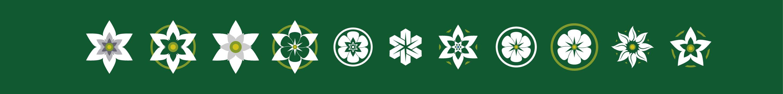 desarrollo del simbolo verde